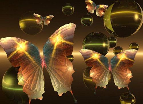 butterfly_003utterflyau